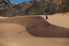 Mooie vrouw in woestijn stock afbeeldingen