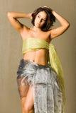 Mooie vrouw in zijde Stock Fotografie