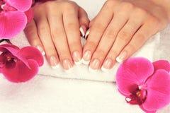 Mooie vrouwelijke handen met perfecte Franse manicure royalty-vrije stock afbeelding