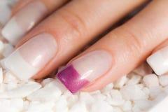 Mooie vrouwelijke vingernagels Stock Foto