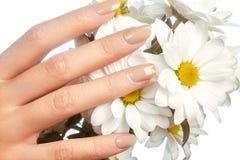 Mooie vrouwelijke vingers met pastelkleur roze manicure wat betreft de lentebloemen Zorg over vrouwelijke handen, gezonde zachte  Stock Foto's