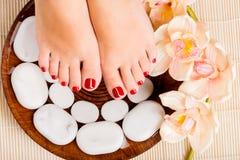 Mooie vrouwelijke voeten met rode pedicure Royalty-vrije Stock Fotografie