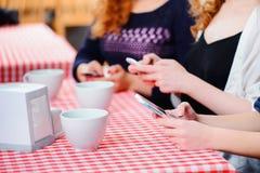 Mooie vrouwen in de koffie Royalty-vrije Stock Foto