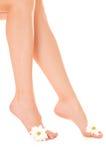 Mooie vrouwenbenen met bloem Royalty-vrije Stock Foto