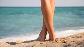 Mooie vrouwens benen Royalty-vrije Stock Foto's