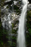 Mooie waterval stock foto's
