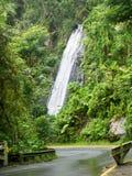 Mooie waterval in Gr Yunque, Puerto Rico, de V.S. royalty-vrije stock foto