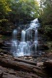 Mooie waterval in kernachtig de herfstweer stock fotografie