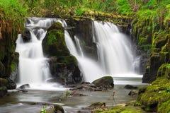 Mooie waterval van de Nauwe valleien van Clare Stock Afbeelding