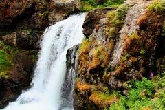 Mooie Waterval van het Yellowstone de Nationale Park met rotsen en mos en bossen stock fotografie
