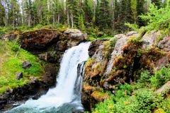 Mooie Waterval van het Yellowstone de Nationale Park met rotsen en mos en bossen schitterende kleuren royalty-vrije stock fotografie