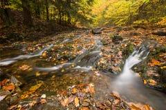 Mooie watervalcascade Stock Foto's
