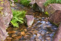 Mooie Watervallen in Bos Royalty-vrije Stock Afbeeldingen