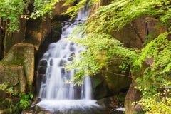 Mooie Watervallen in Bos Stock Afbeelding