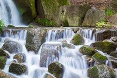 Mooie Watervallen in Bos Stock Fotografie