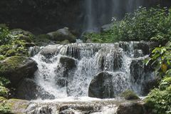 Mooie watervallen in nationaal park in Singapore dierentuin Royalty-vrije Stock Afbeeldingen