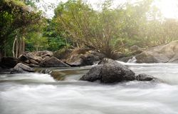 Mooie watervallen in Thailand stock foto