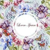 Mooie waterverfkaart met Hydrangea hortensia, orchideebloem, iris stock illustratie
