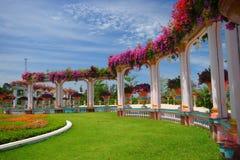 Mooie weelderige tuin Stock Afbeeldingen
