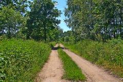 Mooie weg bij de Poolse grens, Polen Stock Fotografie