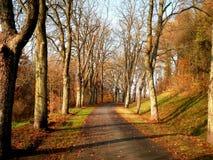 Mooie Weg in Duitsland royalty-vrije stock afbeelding