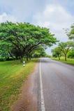 Mooie weg met aardscène Royalty-vrije Stock Foto