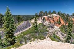 Mooie weg over Bryce Canyon in zomer stock afbeelding