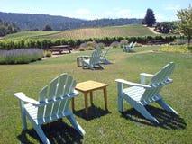 Mooie Wijngaard in Noordelijk Californië Royalty-vrije Stock Foto