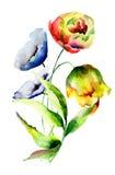 Mooie wilde bloemen Stock Afbeeldingen