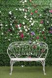 Mooie witte bank naast groene haag Stock Afbeelding