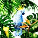 Mooie witte Kaketoe, kleurrijke grote papegaai in wildernisregenwoud, exotische bloemen en bladeren, waterverfillustratie Stock Afbeeldingen