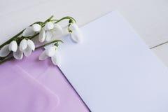Mooie witte sneeuwklokjes met duidelijk document op witte achtergrond Stock Foto's