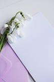 Mooie witte sneeuwklokjes met duidelijk document op witte achtergrond Royalty-vrije Stock Afbeeldingen