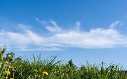 Mooie witte wolken op blauwe hemel over groen gras in de zomer Royalty-vrije Stock Afbeeldingen