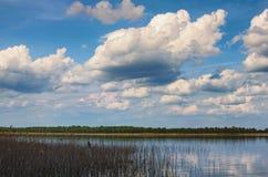 Mooie witte wolkenvlieg boven het meer Volyngebied ukraine Royalty-vrije Stock Fotografie