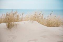 Mooie witte zandduinen bij het overzeese strand Royalty-vrije Stock Fotografie