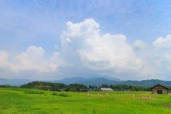 Mooie wolkenvorming rond Kikuchi-Kasteel Stock Afbeelding
