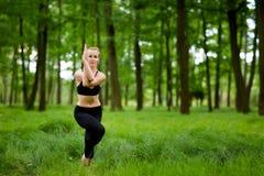 Mooie yogazitting in hout Royalty-vrije Stock Afbeeldingen