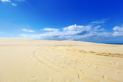 Mooie zandduinen, Australië. Stock Foto