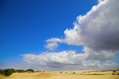 Mooie zandduinen, Australië. Royalty-vrije Stock Afbeeldingen
