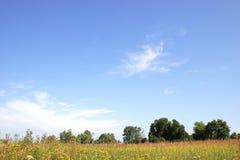 Mooie zonnige dag Stock Foto