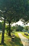 Mooie zonnige dag bij de openluchtparken stock afbeelding
