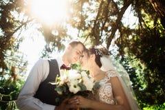 Mooie zonnige dag Huwelijkspaar het stellen op de achtergrond van aard royalty-vrije stock fotografie