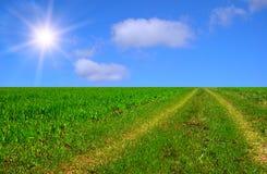 Mooie zonnige weg Stock Afbeelding