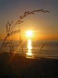 Mooie zonsondergang Royalty-vrije Stock Foto