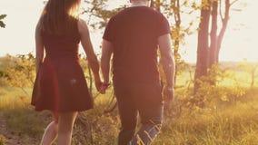 Mooie zonsondergang in aard De minnaars lopen in bos, de bladeren van de vrouwenaanrakingen van greephanden Langzame mo, steadica stock footage