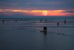 Mooie zonsondergang bij de zomer stock foto's