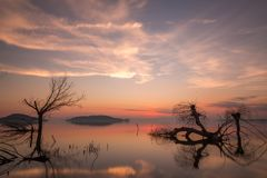 Mooie zonsondergang bij Trasimeno-meer Umbrië, met volkomen nog water, skeletachtige bomen en mooie warme kleuren royalty-vrije stock foto's
