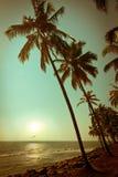 Mooie zonsondergang bij tropisch strand Stock Foto's