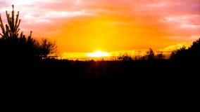 Mooie zonsondergang in een heidelandschap met roze polaire stratosferische wolken, een weerfenomeen dat de hemel kleurt stock afbeelding